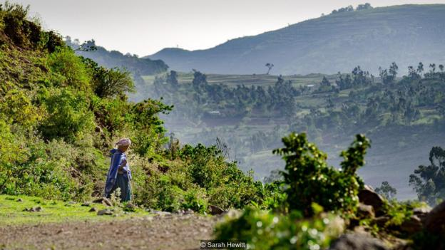 An Ethiopian woman descends back to the valley after visiting the church forest (Credit: Credit: Sarah Hewitt)